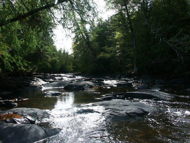 The same rapids in late summer . . .