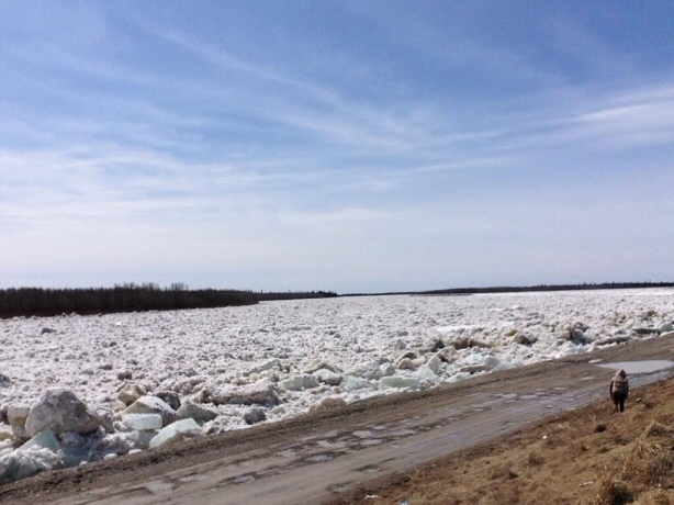 The Albany River at Kashechewan, now breaking up . . . [Submitted image]