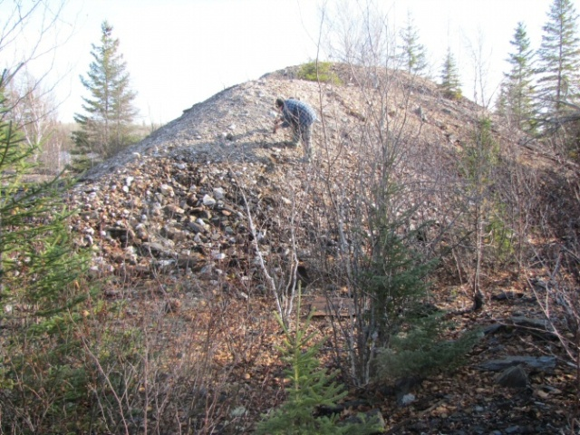 What's left of the ore dump. Clarence Michon is trying to pick out a chunk of ore (gold-bearing rock) as opposed to waste rock, which is probably all that remains.