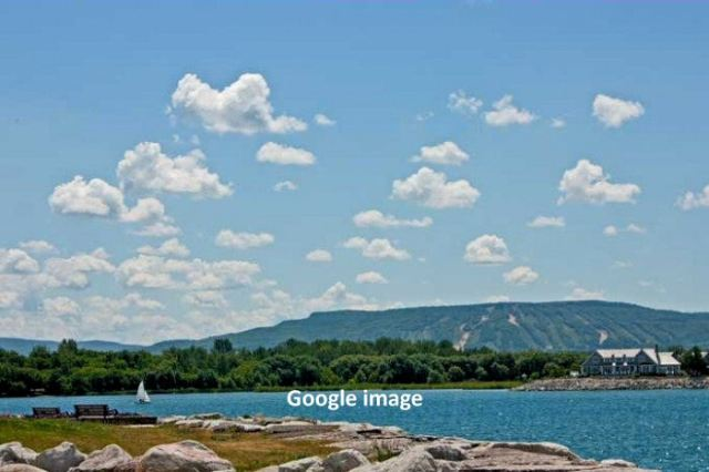 View of Blue Mountain from Collingwood. Google image.